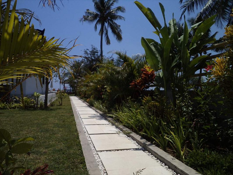 garden (4)